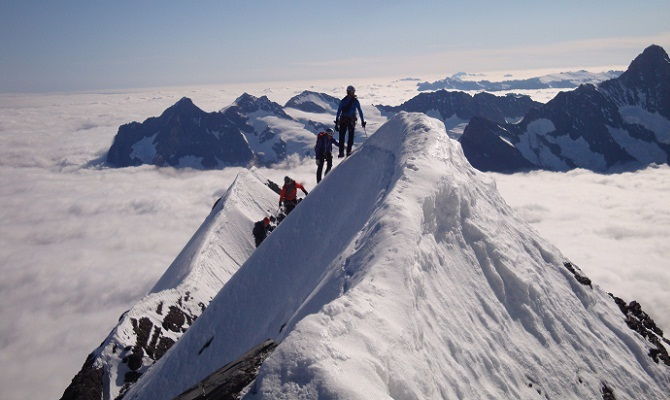 Icicle guides and clients on  the Mitelleggi  approaching the summit of the Eiger